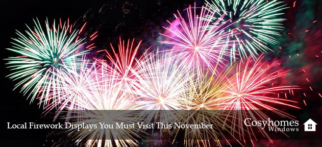 Local Firework Displays You Must Visit This November